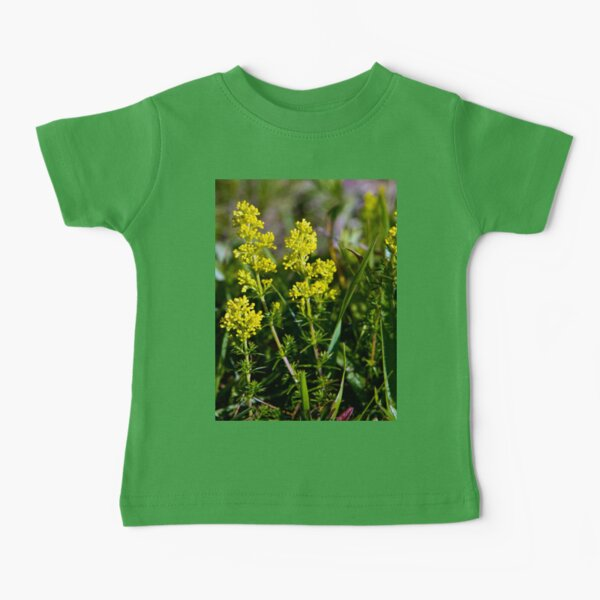 Galium Verum (Lady's Bedstraw), Inishmore, Aran Islands Baby T-Shirt