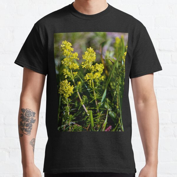 Galium Verum (Lady's Bedstraw), Inishmore, Aran Islands Classic T-Shirt