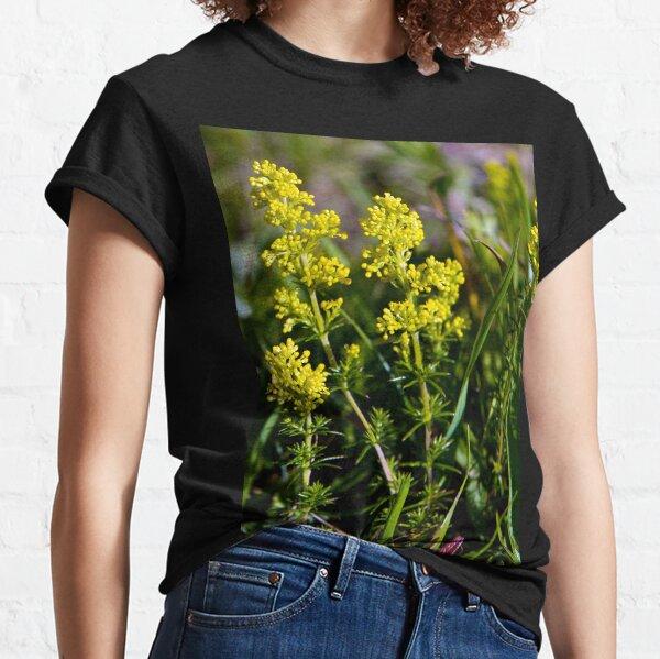 Galium Verum (Lady's Bedstraw), Inishmore, Aran Islands Classic T-Shirt
