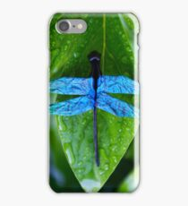 Blue Dragonfly - Origami Dragonfly iPhone Case/Skin
