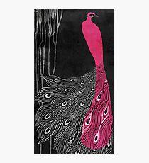 Art Nouveau Peacock Pink Photographic Print