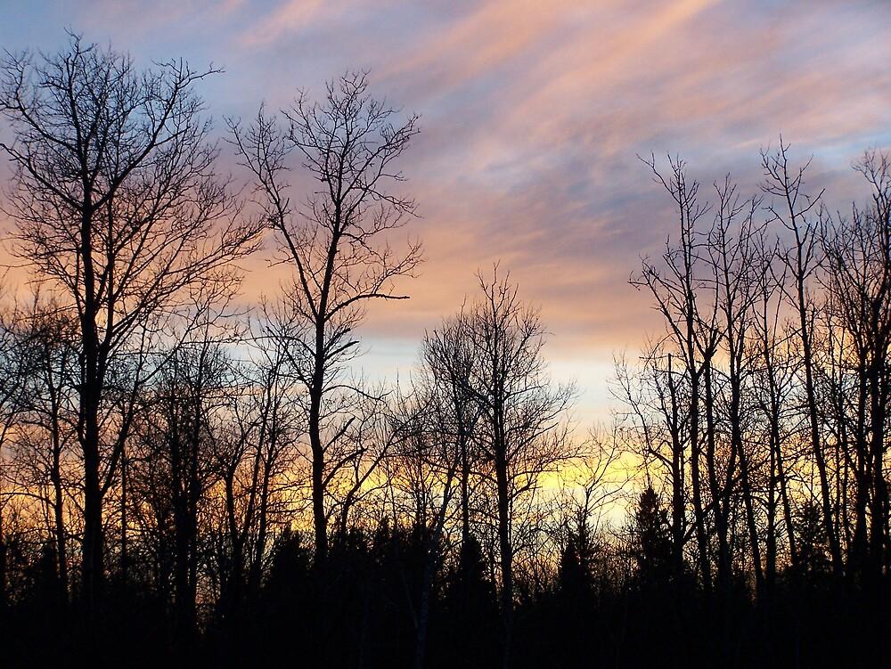 Colorful Clouds by Gene Cyr