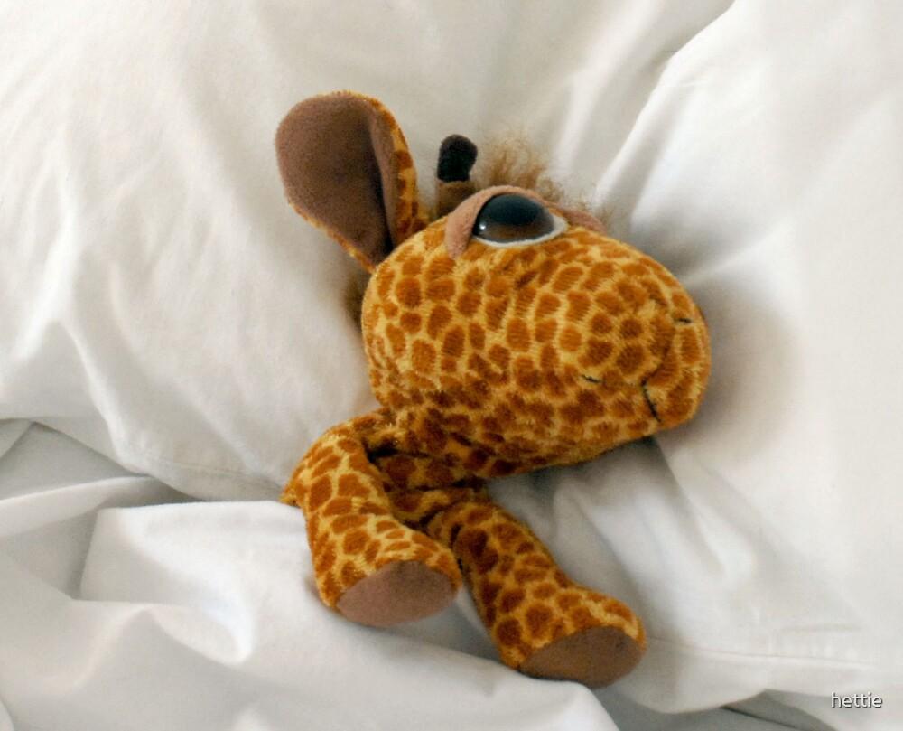 Gordon Sleeping by hettie