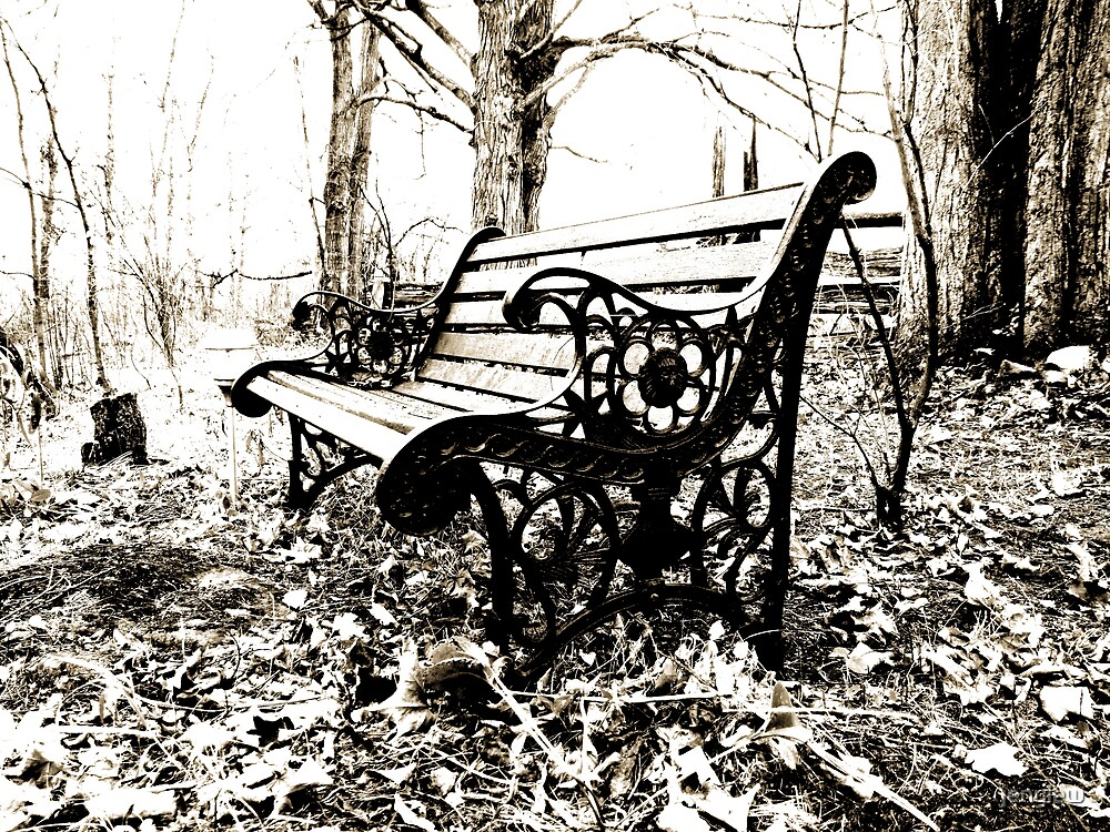 Bench by jenylew