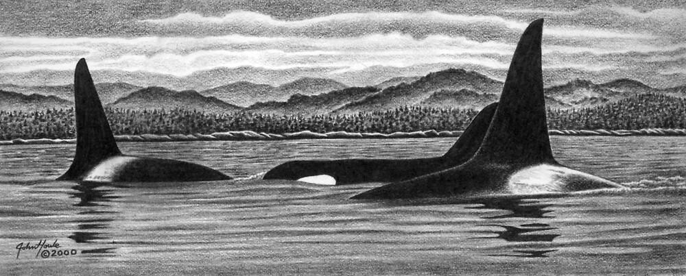 Surfacing by John Houle
