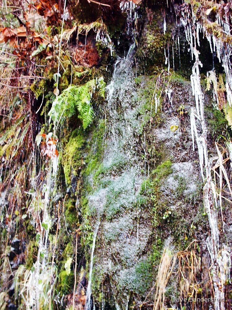 Winter's Icy Grip by Dave Sandersfeld