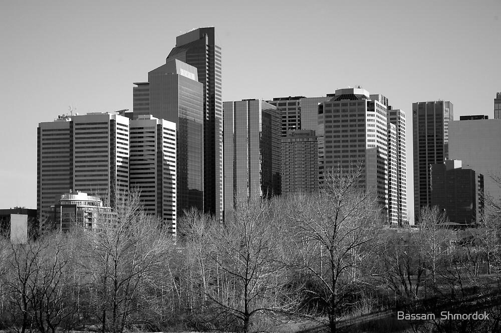 Calgary CityScape in Winter by Bassam  Shmordok