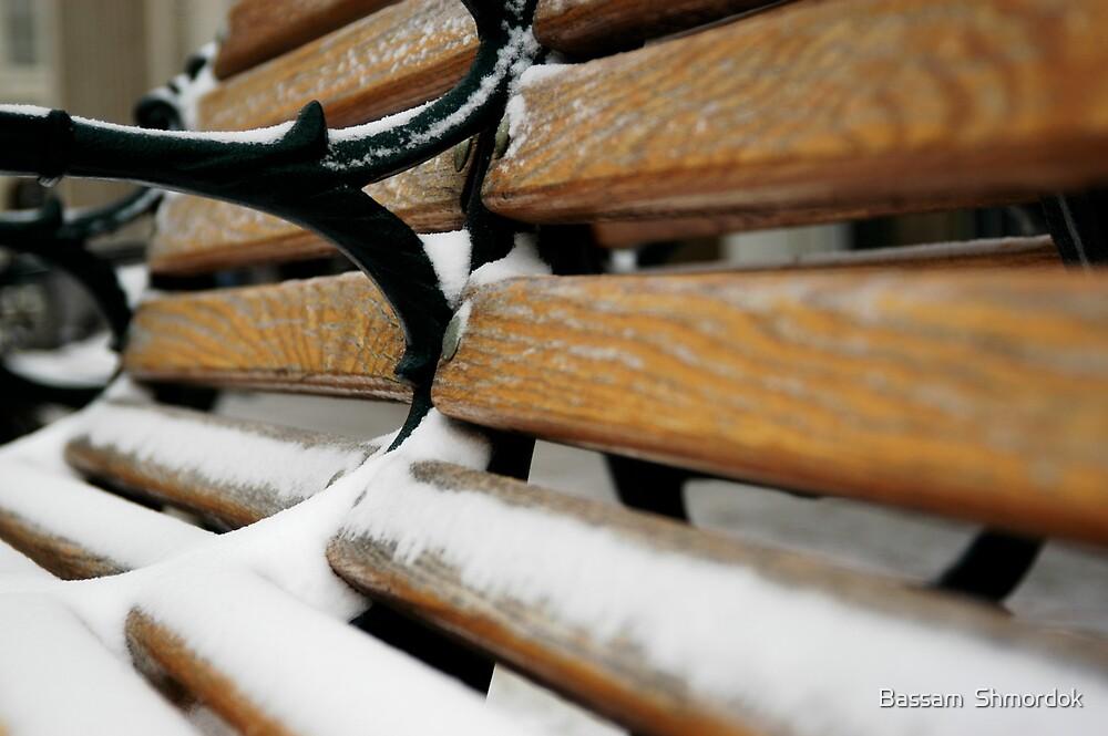 Bench in winter by Bassam  Shmordok
