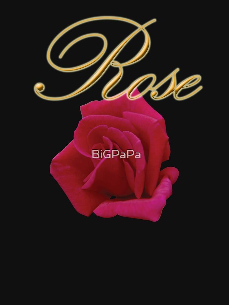 Rose by BiGPaPa
