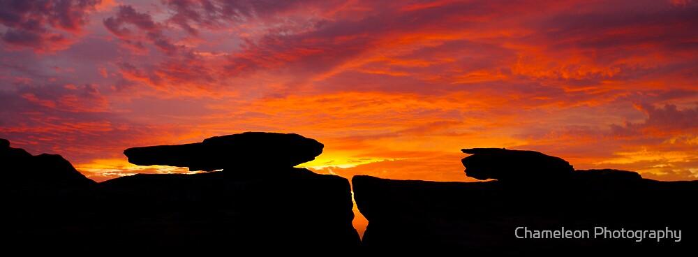 Mushroom Rock by Chameleon Photography