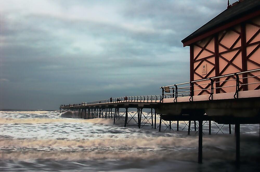 Crimson Tide by Glen Birkbeck