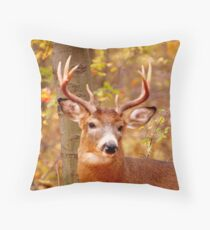 My Beautiful Antlers (card) Throw Pillow