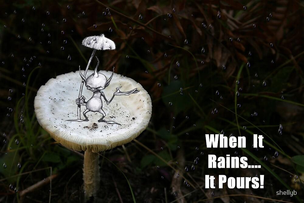 When it rains...It Pours... by shellyb