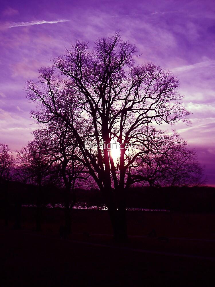 Purple night by Designcat