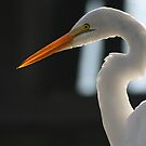 Egret Profile by Jonicool