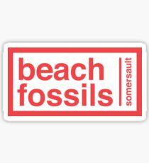 Pegatina etiqueta engomada de la voltereta de los fósiles de la playa