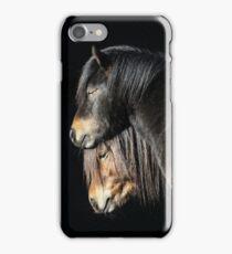 30.3.2017: Shetland Ponies iPhone Case/Skin