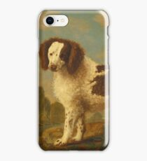 George Stubbs - Brown And White Norfolk Or Water Spaniel (1778) iPhone Case/Skin