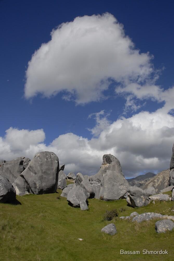 Castle Hill, New Zealand by Bassam  Shmordok