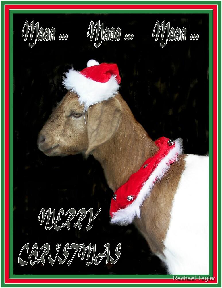 Christmas Card #1 by Rachael Taylor