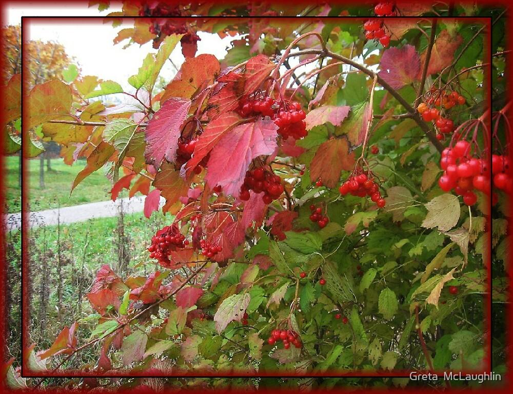 Autumn Leaves by Greta  McLaughlin
