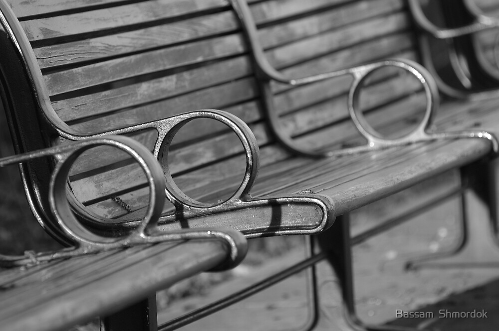 Bench in the park by Bassam  Shmordok