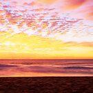 Palm Beach, Northern Beaches by Matt  Lauder