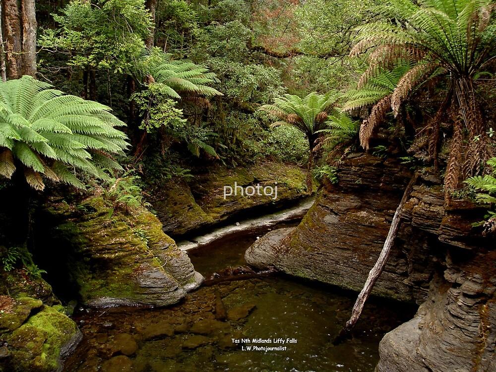 photoj Tas, Liffy Falls by photoj