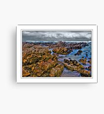 Low tide on the Rocks Canvas Print