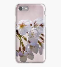 Cherry Flowers iPhone Case/Skin