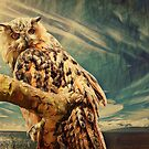 High on a branch there was an owl by © Kira Bodensted