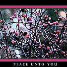 Peace Unto You by Greg German
