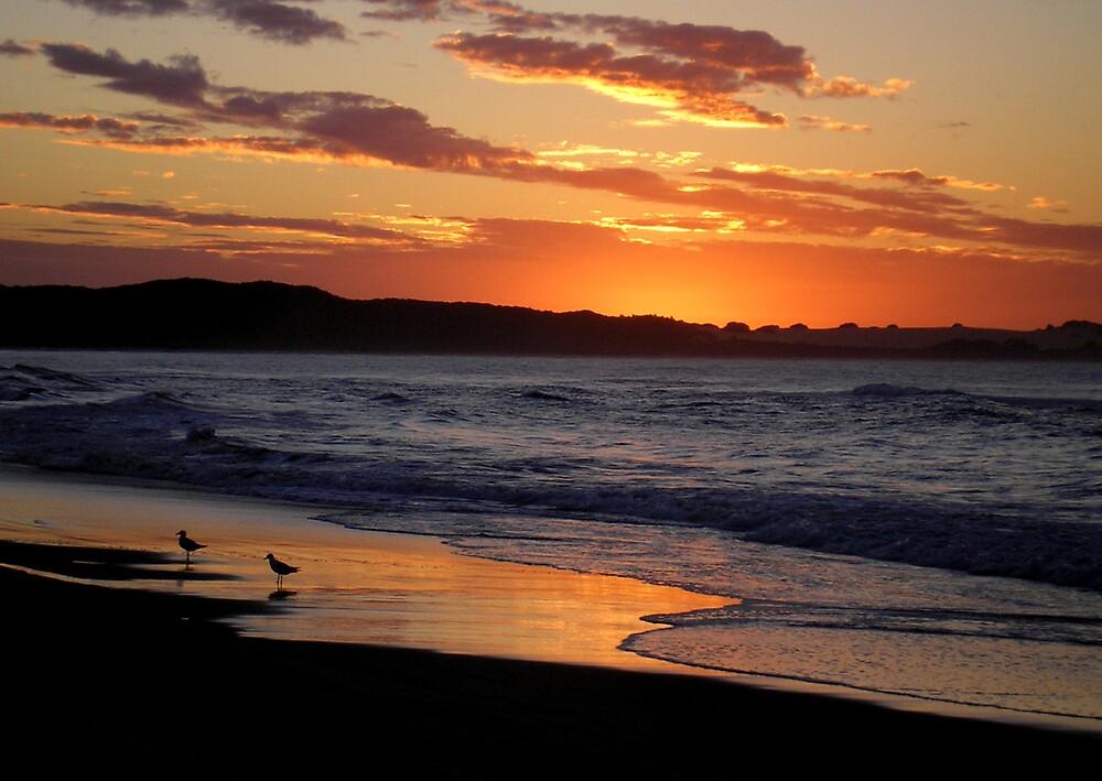 Fraser Sunset by xshadowxv