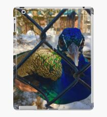Sassy Peacock iPad Case/Skin