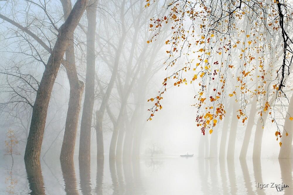 Misty Waters by Igor Zenin