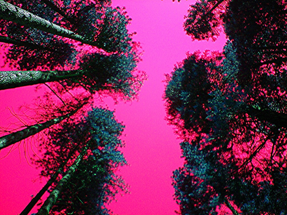 Tree Shades by Ezza