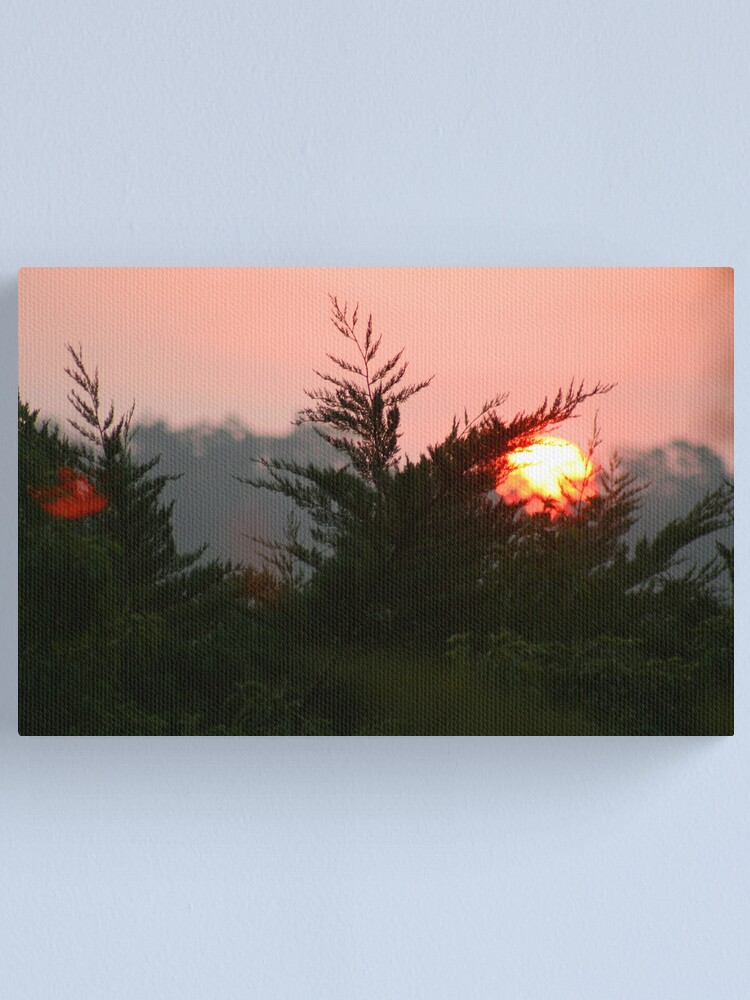 Alternate view of January Canvas Print