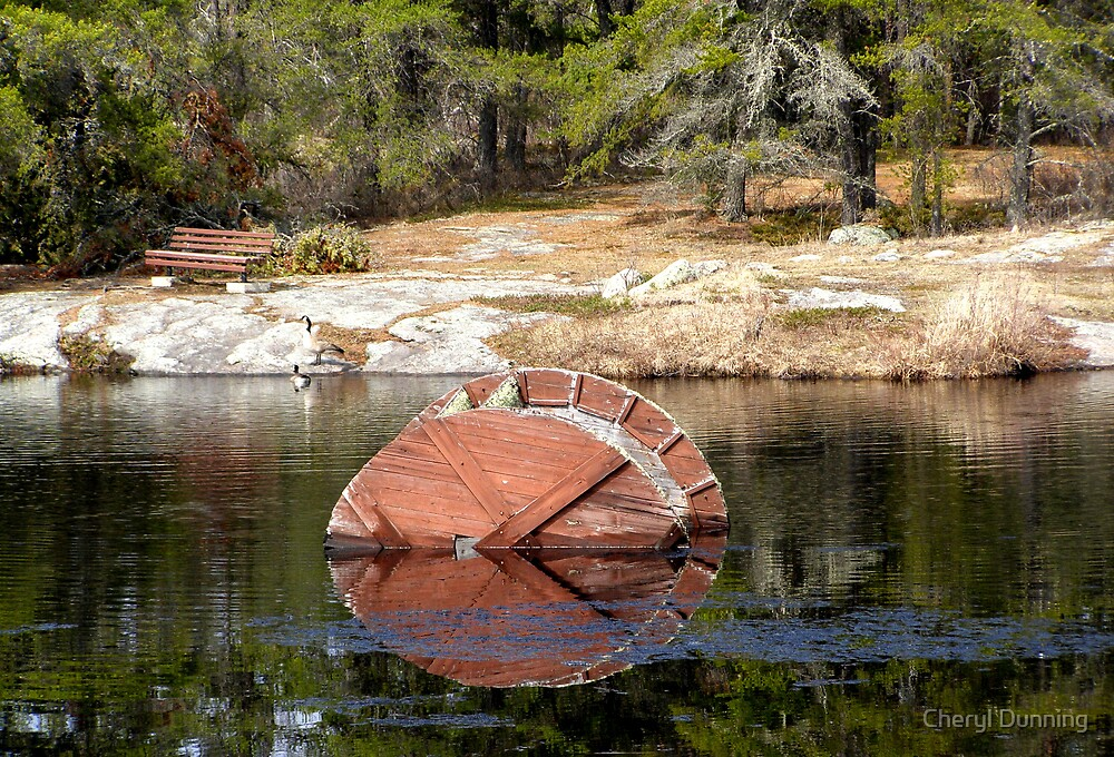 reflected view by Cheryl Dunning