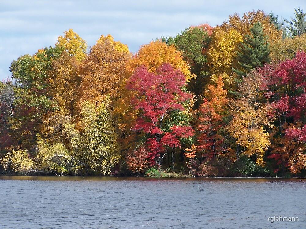The Pond by rglehmann