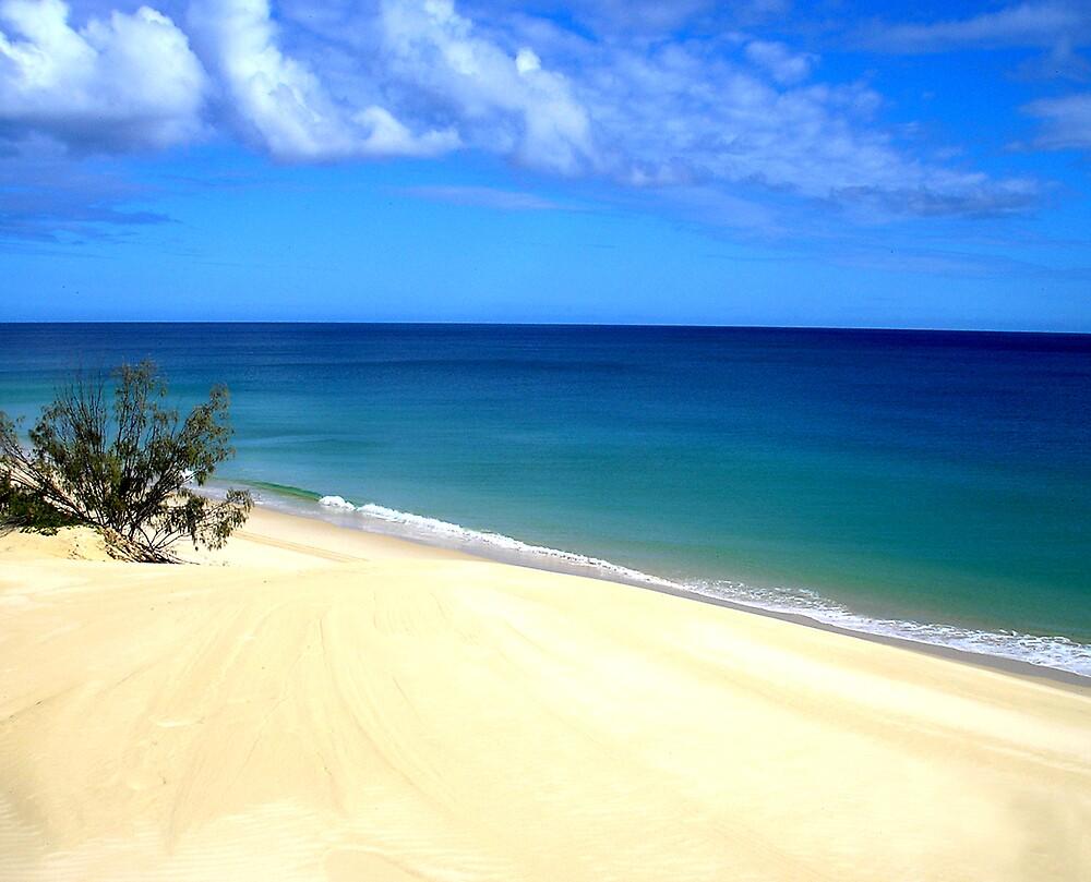 Dune View by xshadowxv