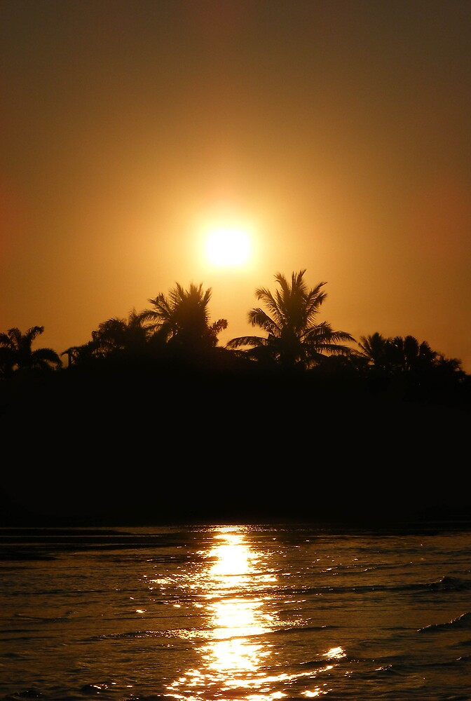 Golden sunset by xshadowxv