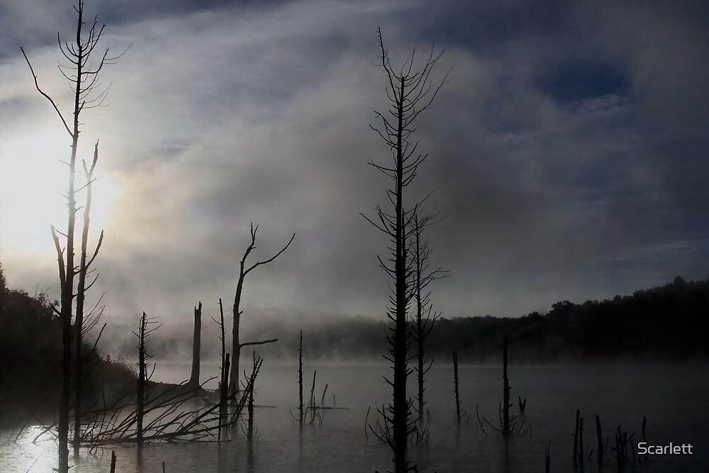 Dawn on the Lake by Scarlett