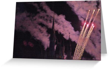 Fireworks by Vonnie Murfin