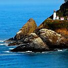 Heceta Head Lighthouse/ Beautiful and Haunted ! by Nancy Richard