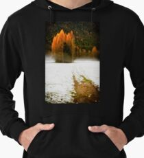 Group of pine trees in the mist Lightweight Hoodie