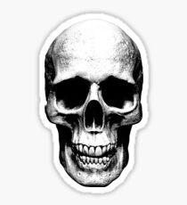 skull illustration  Sticker