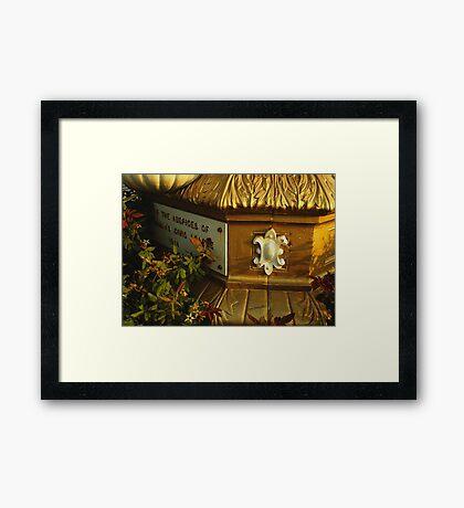 Golden Detail Framed Print