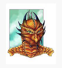 Dragonfolk Photographic Print