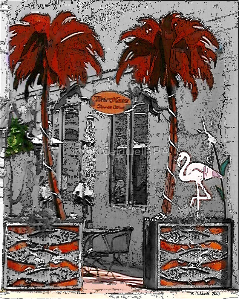 Palm Trees and Flamingo by © CK Caldwell IPA