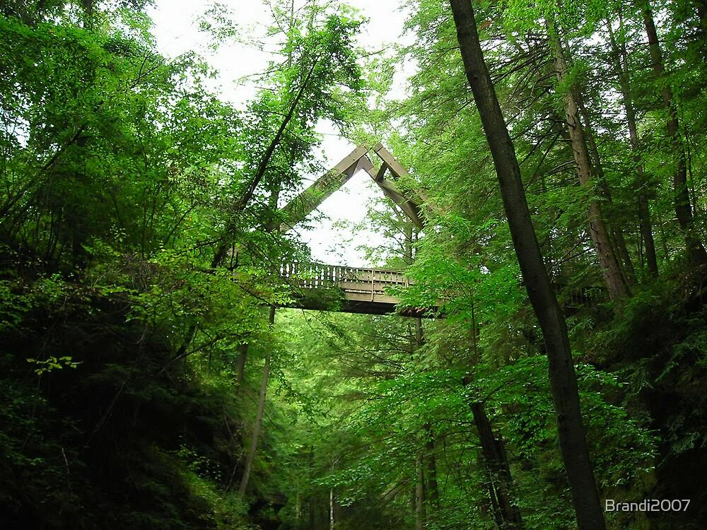 bridge by Brandi2007